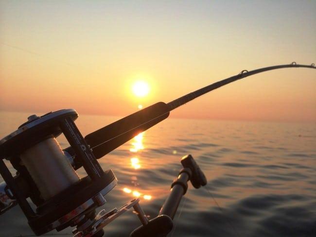 דייג באיים האזוריים