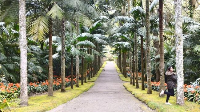 גן באיים האזוריים