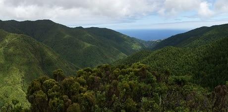 Pico da Vara - פיקו דה ורה