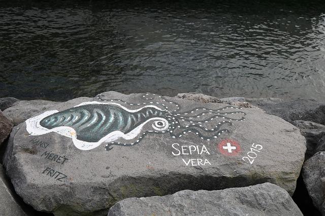 ציור של דיונון ליד הים