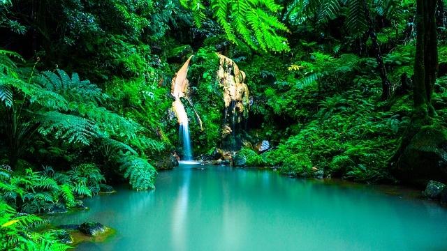 פלורס - האיים האזוריים