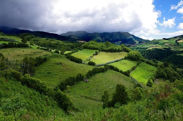 כרי דשא באיים האזוריים - מחזה די שגרתי שלא מתרגלים אליו